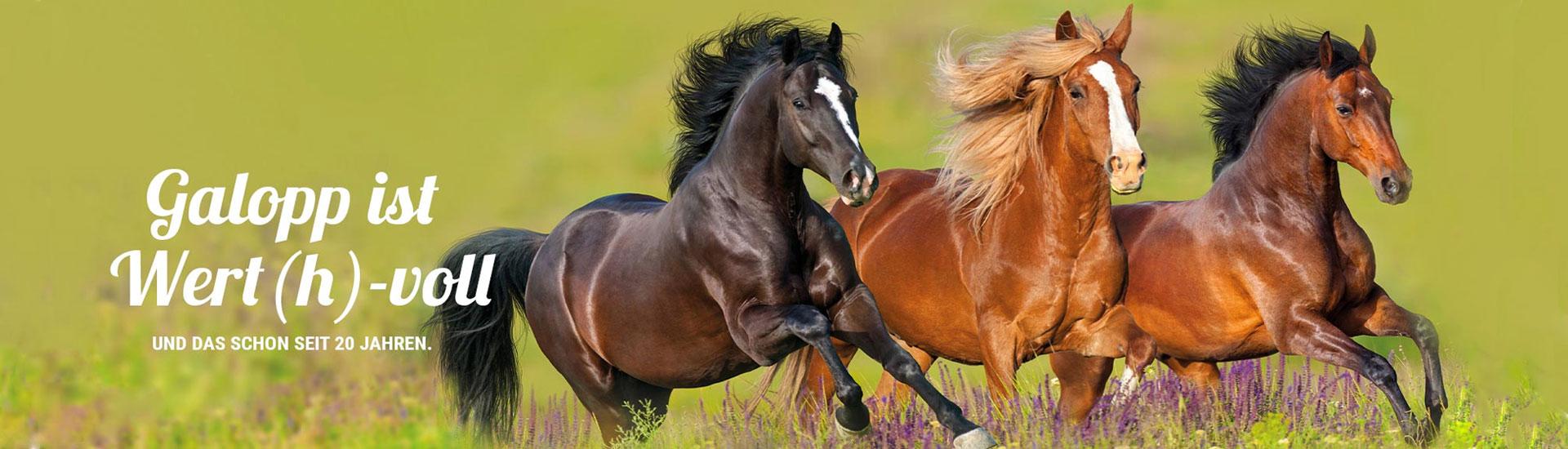 Galopp Pferdefutter ShGalopp ist Wert(h)-vollop
