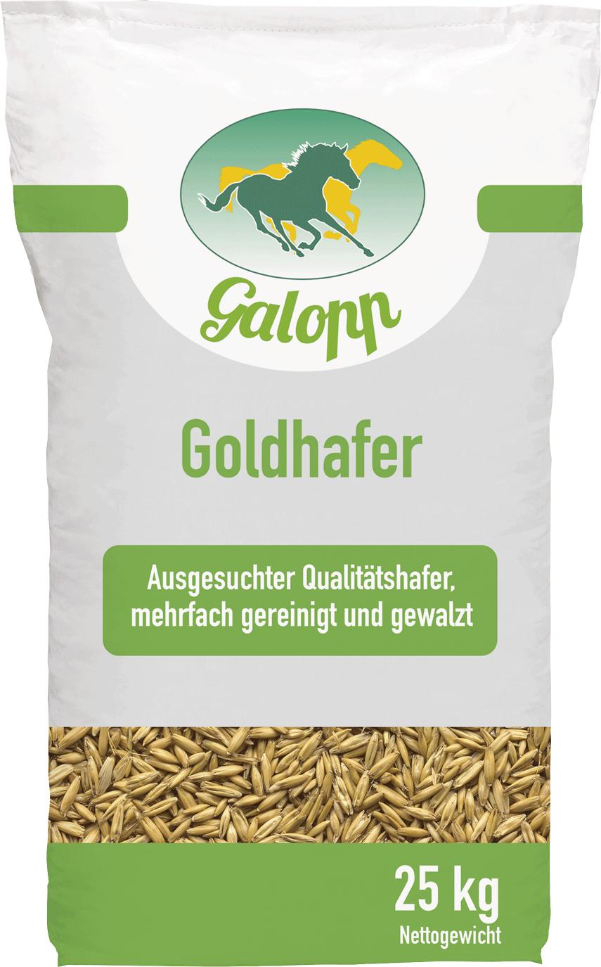 Goldhafer